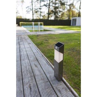 Lutec Solstel Poste de Jardín LED Acero inoxidable, 1 luz, Sensor de movimiento