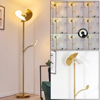 Cazis Lámpara de Pie LED dorado, 2 luces
