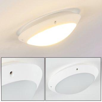 Grafton Lámpara de techo para exterior Blanca, 1 luz