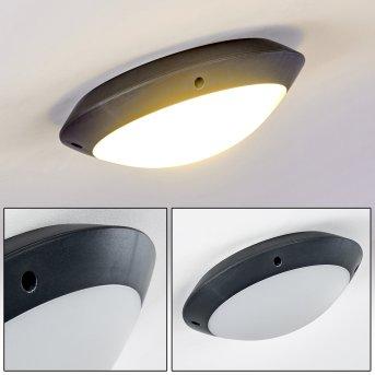 Grafton Lámpara de techo para exterior Antracita, 1 luz