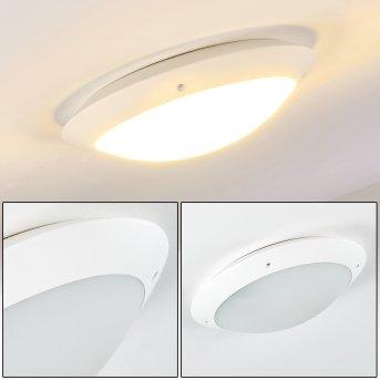 Grafton Lámpara de techo para exterior Blanca, 2 luces
