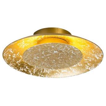 Nino Leuchten DALIA Lámpara de Techo LED dorado, 1 luz