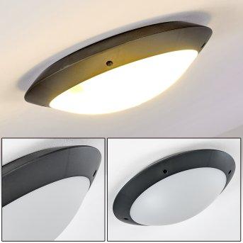 Grafton Lámpara de techo para exterior Antracita, 2 luces