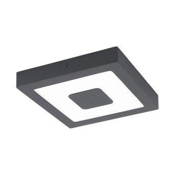 Eglo IPHIAS Lámpara de Techo LED Antracita, 1 luz