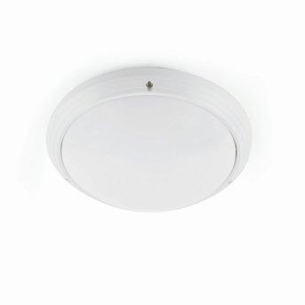 Faro Dakyu Lámpara de techo para exterior Blanca, 1 luz
