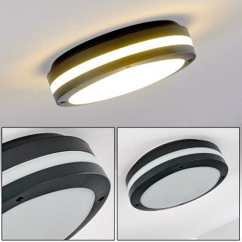 Wollongong Lámpara de techo para exterior LED Antracita, 1 luz