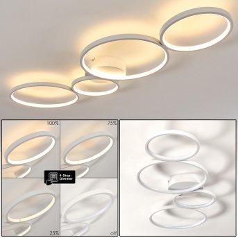 Rodekro Lámpara de Techo LED Blanca, 1 luz