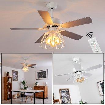 Izola Ventilador de techo Gris, Blanca, 1 luz, Mando a distancia