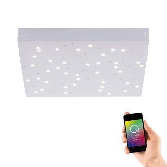 Lámpara de Techo Paul Neuhaus Q-UNIVERSE LED Blanca, 1 luz, Mando a distancia, Cambia de color