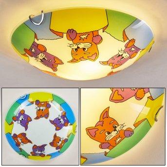 Pizzy Katze Lámpara de Techo Cromo, Blanca, 2 luces