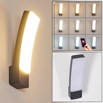 Maseru Aplique para exterior LED Antracita, 1 luz