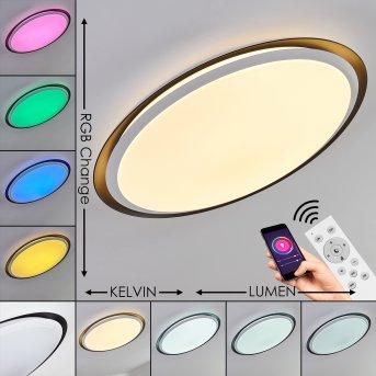 Vejle Lámpara de Techo LED Blanca, 2 luces, Cambia de color