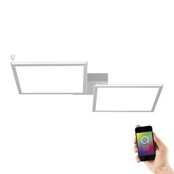 Paul Neuhaus Q-ROSA Lámpara de Techo LED Blanca, 2 luces, Mando a distancia