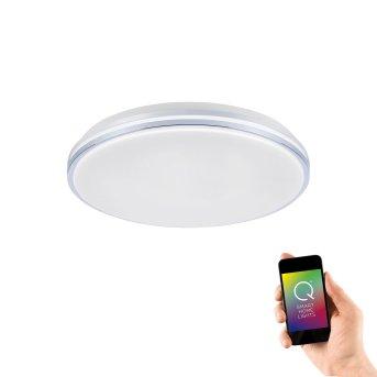 Lámpara de Techo Paul Neuhaus Q-BENNO LED Cromo, 1 luz, Mando a distancia