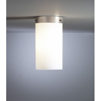 Tecnolumen DMB 31 Lámpara de techo Níquel-mate, 1 luz