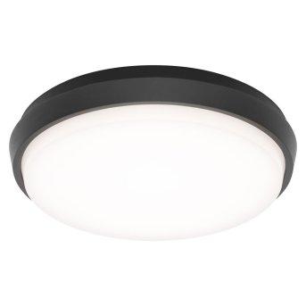 Lámpara de techo para exterior LCD TYP 5067 LED Negro, 1 luz