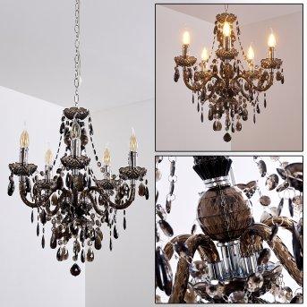 Lámpara de araña Delhi Negro, Transparente, claro, 5 luces