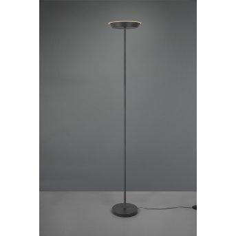 Reality Swona Lámpara de Pie LED Negro, 1 luz