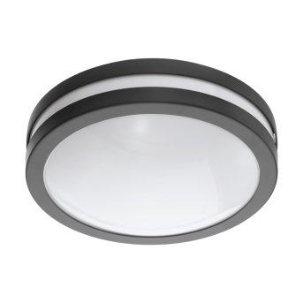 Eglo connect LOCANA Lámpara de Techo LED Antracita, 1 luz
