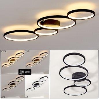 Rodekro Lámpara de Techo LED Negro, 1 luz