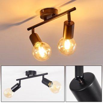 Maidford Lámpara de Techo Negro, 2 luces