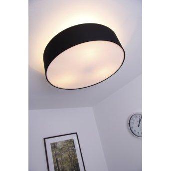 Trio 3033 Lámpara de techo Níquel-mate, Negro, 3 luces