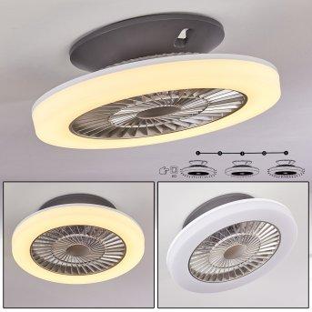 Somalia Ventilador de techo LED Plata, Transparente, claro, 1 luz