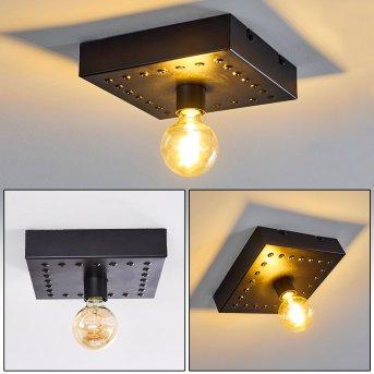 Octoraro Lámpara de Techo Negro, 1 luz