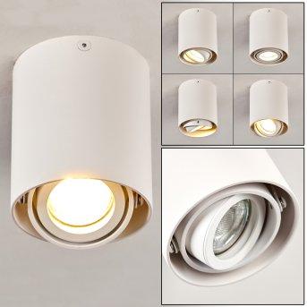 Lámpara de Techo Anguilla Blanca, 1 luz