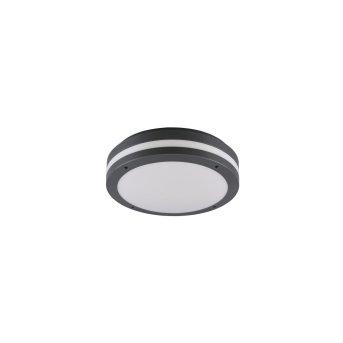 Reality KENDAL Lámpara de techo para exterior LED Antracita, 1 luz