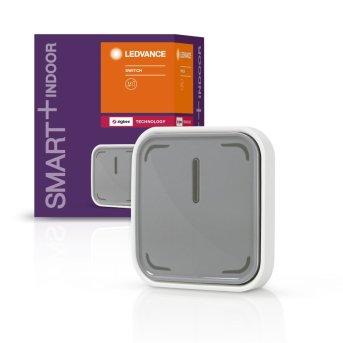 LEDVANCE SMART+ Control remoto Gris