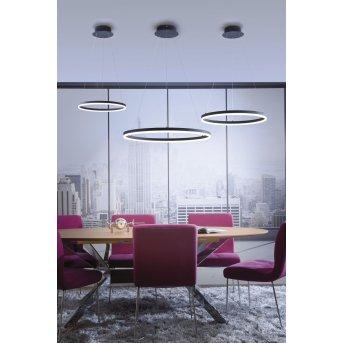 Paul Neuhaus TITUS Lámpara Colgante LED Antracita, 1 luz