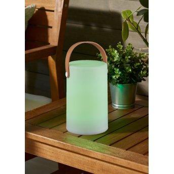 Reality ARUBA Lámpara para exterior LED Blanca, 1 luz, Cambia de color