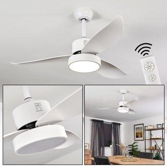 Doha Ventilador de techo LED Blanca, 1 luz, Mando a distancia
