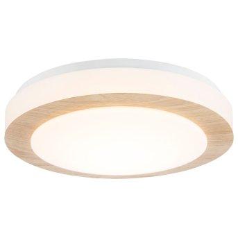 Nino Leuchten GORDON Lámpara de Techo LED Blanca, 1 luz