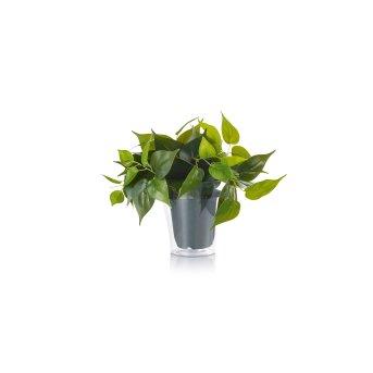 Trio Plant Flor LED Verde