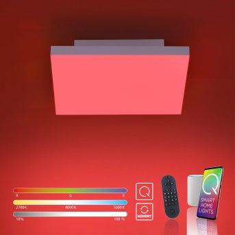 Paul Neuhaus Q-FLAG Lámpara de Techo LED Blanca, 1 luz, Mando a distancia, Cambia de color