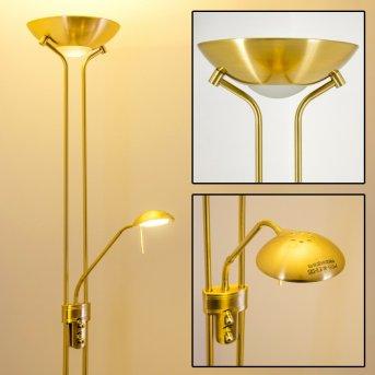 Rom Lámpara de pie LED Latón, 2 luces