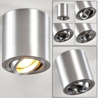 Lámpara de Techo Barbuda Plata, 1 luz