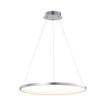 Lámpara Colgante Leuchten Direkt CIRCLE LED Plata, 1 luz